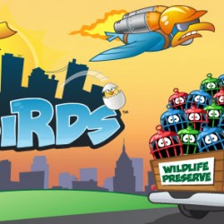 City Birds Game